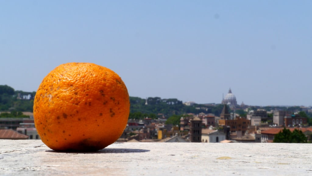 The Garden of the Oranges